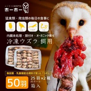 ウズラ50羽餌用 頭付き内臓未処理 オーガニック育ち【冷凍配送】