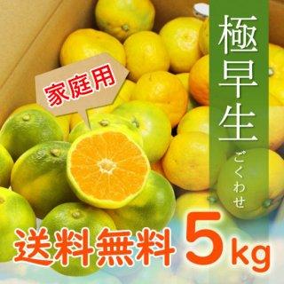 【家庭用】有田みかん 極早生みかん 5kg