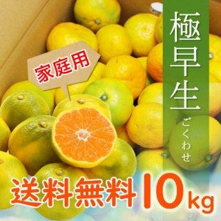 【家庭用】有田みかん 極早生みかん 10kg