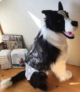 紙おむつ中型犬用