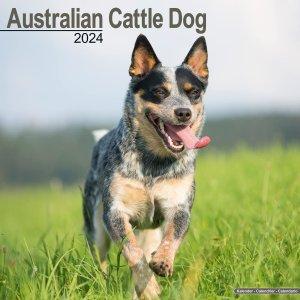 Avonside オーストラリアンキャトルドッグ カレンダー