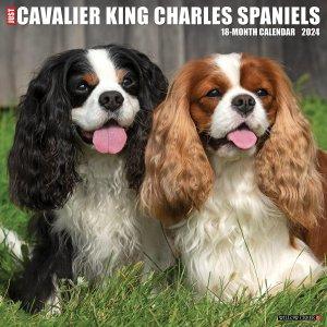WillowCreek キャバリアキングチャールズスパニエル カレンダー---Cavalier King Charles Spaniels