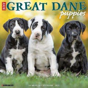 WillowCreek グレートデーン【パピー】カレンダー Just Great Dane Puppies