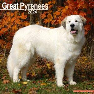 Avonside グレートピレニーズ カレンダー Great Pyrenees