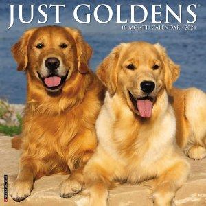 WillowCreek ゴールデンレトリーバー 月めくりカレンダー JUST GOLDENS
