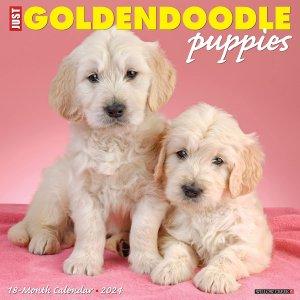 WillowCreek ゴールデンドゥードル パピーカレンダー---JUST GOLDENDOODLE PUPPIES