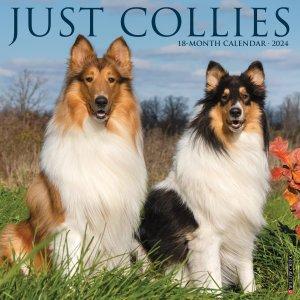 WillowCreek コリー  JUST COLLIES カレンダー