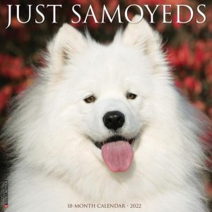 WillowCreek サモエド カレンダー JUST Samoyeds