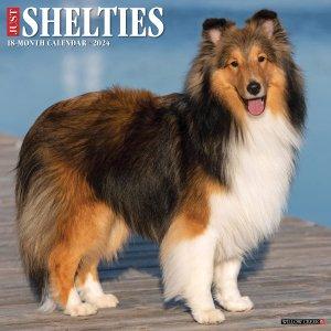 WillowCreek シェットランドシープドッグ カレンダー JUST Shelties