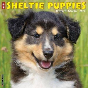 WillowCreek シェットランドシープドッグ【パピー】カレンダー JUST Sheltie Puppies