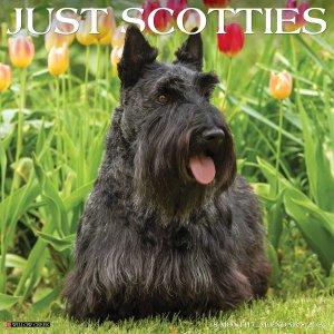 WillowCreek スコティッシュテリア カレンダー JUST Scotties