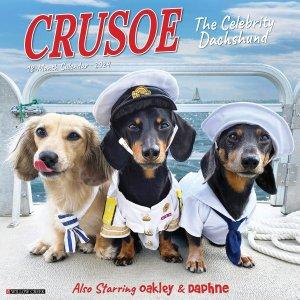 WillowCreek ダックスフンド カレンダー【Crusoe the Celebrity Dachshund】