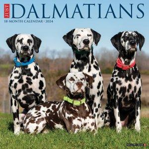 WillowCreek ダルメシアン カレンダー JUST Dalmatians