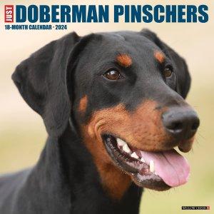 WillowCreek ドーベルマン カレンダー JUST Doberman Pinschers