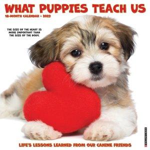 I love Puppies 365 Days 月めくりカレンダー
