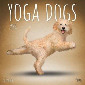 Yoga Dogs 月めくりカレンダー
