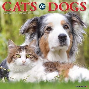 Cats & Dogs 月めくりカレンダー WillowCreek