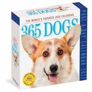 日めくり 365 Dogs