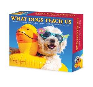 日めくり What Dogs Teach Us