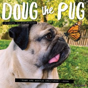 WillowCreek Doug the PUG パグ