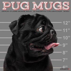 WillowCreek Pug Mugs パグ