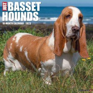 バセットハウンド カレンダー JUST BASSET HOUNDS --- WillowCreek
