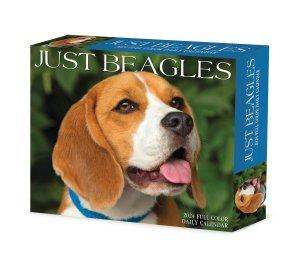 ビーグル【日めくりカレンダー】JUST Beagles--- Willow Creek