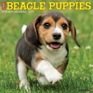 WillowCreek ビーグル【パピー】カレンダー JUST Beagle Puppies