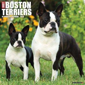 WillowCreek ボストンテリア カレンダー JUST Boston terriers