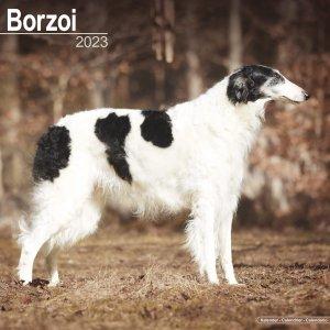 Avonside ボルゾイ カレンダー Borzoi