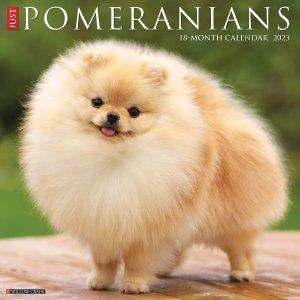 WillowCreek ポメラニアン カレンダー JUST Pomeranians