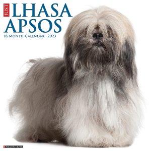 WillowCreek ラサアプソ カレンダー JUST Lhasa Apsos