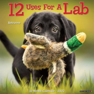 WillowCreek 12 uses for a Lab カレンダー