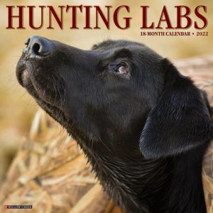 WillowCreek Hunting Labs カレンダー