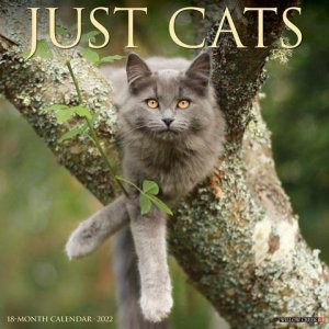 JUST CATS カレンダー Willow creek