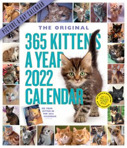 365 Kittens a year 月めくりカレンダー