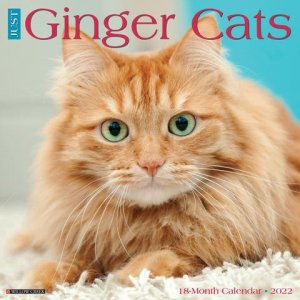 JUST Ginger Cats カレンダー Willowcreek