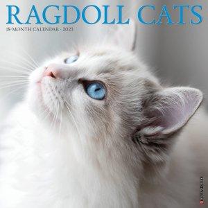 ラグドール カレンダー Willowcreek Ragdoll Cats