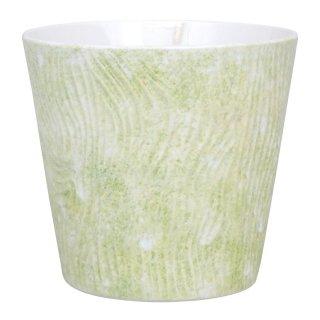 コーラルグリーン ロックカップ