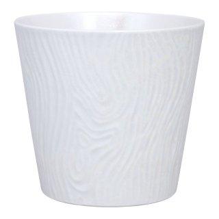 コーラルホワイト ロックカップ
