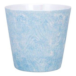 コーラルブルー ロックカップ