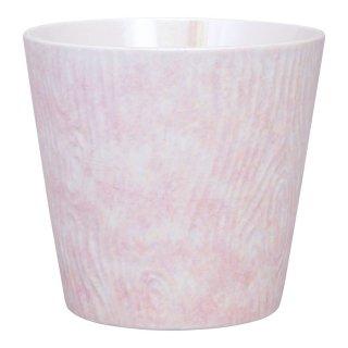 コーラルピンク ロックカップ