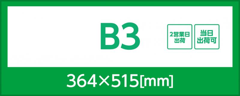 マット紙(B3)
