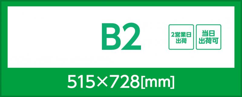 マット紙(B2)