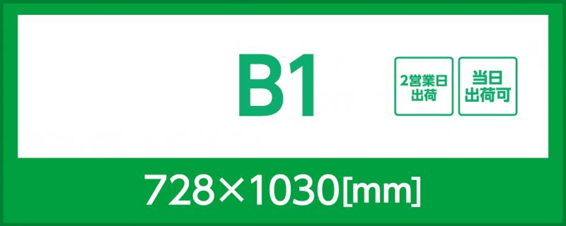 マット紙(B1)