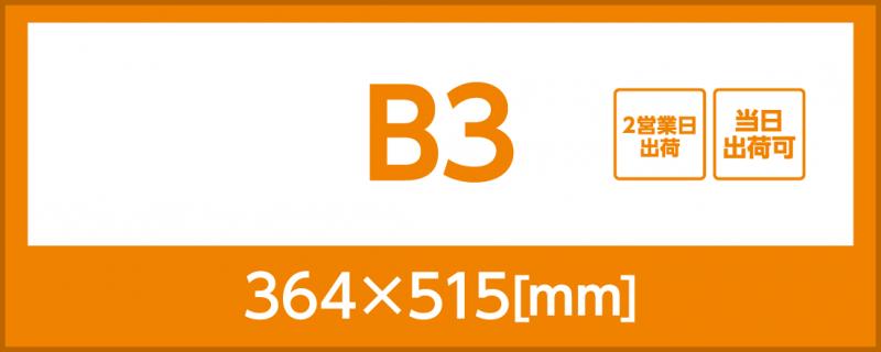 合成紙(B3)