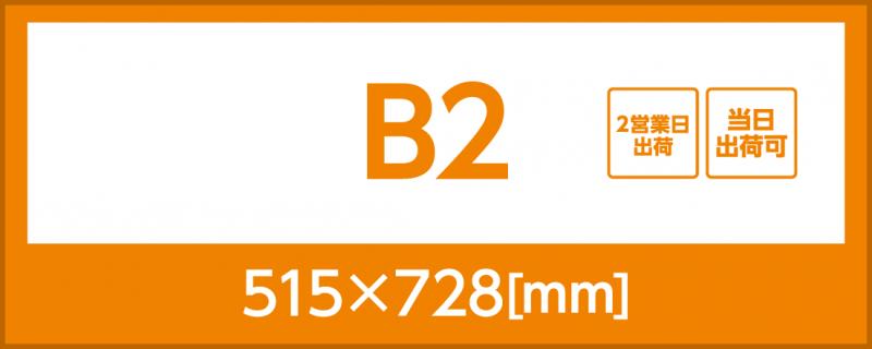 合成紙(B2)