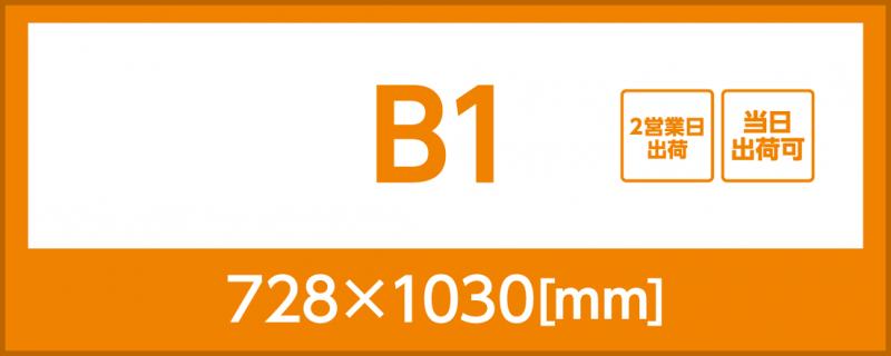合成紙(B1)