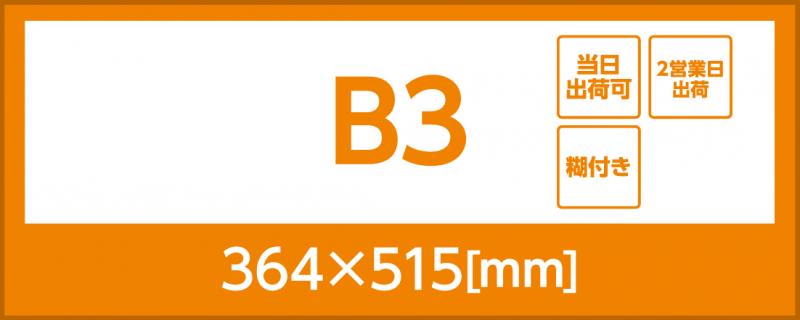 合成紙(糊付き)(B3)