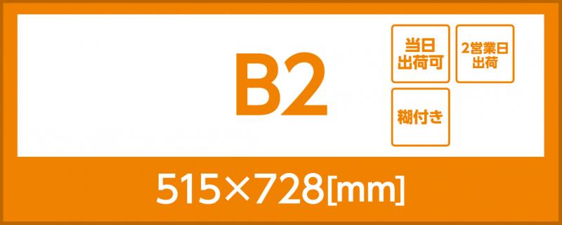 合成紙(糊付き)(B2)